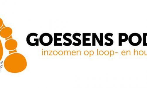Podotherapie Den Bosch voor voeten?